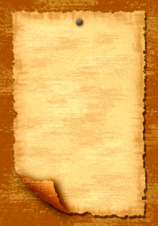 old scroll: Wooden texture background and paper blank leaf Stock Photo