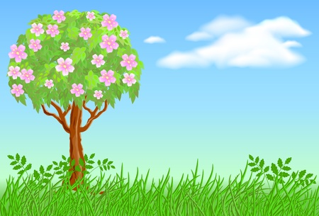 Flowering tree on meadow and clouds Stock Vector - 10290827