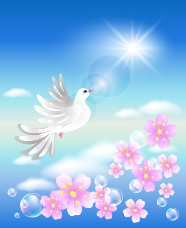 dove bird: Dove in the clouds and sunshine Illustration