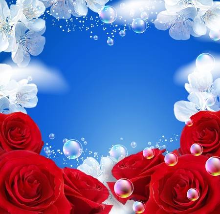 Sky, roses, clouds and bubbles   photo
