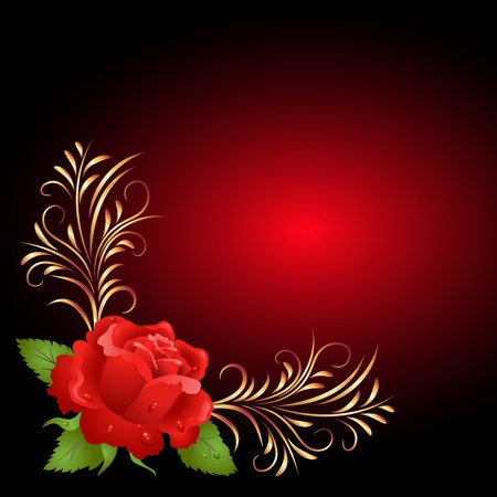 Red rose with golden frame ornament Vector