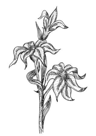 Flowers in retro style Stock Vector - 10343099