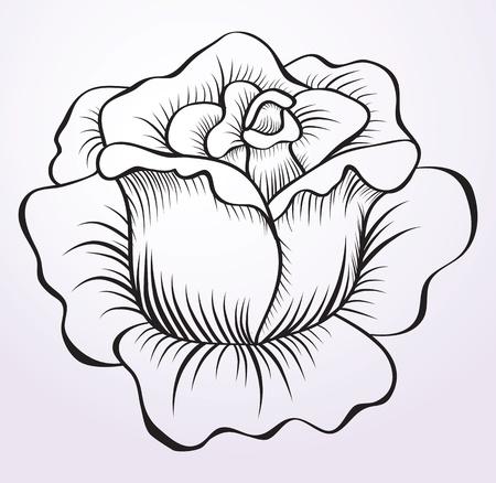 tatouage fleur: photo rose