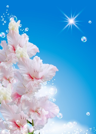 Gladiolus  and bubbles against the sky photo