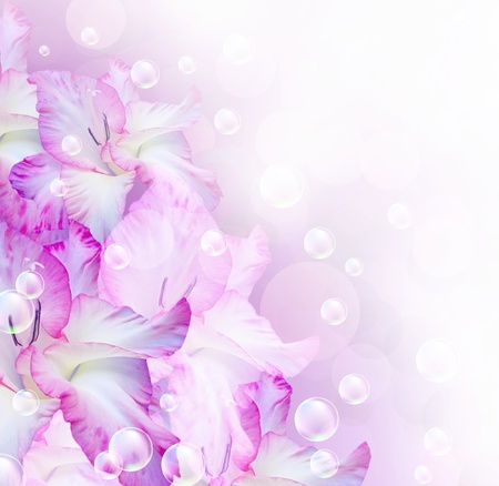 gladiolus: Card with gladiolus, bubbles and stars