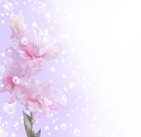 violeta: Tarjeta con gladiolos, burbujas y estrellas