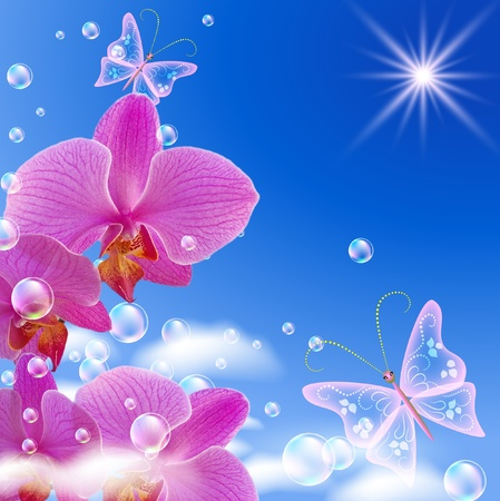 Sky, orchid, clouds and butterflies photo