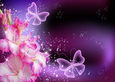 Gladiolus and stars photo