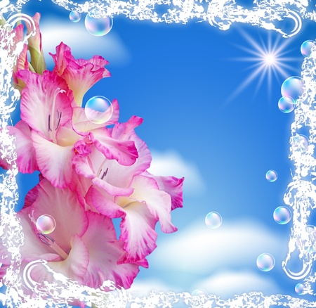 Gladiolus and clouds in a white open-work frame photo