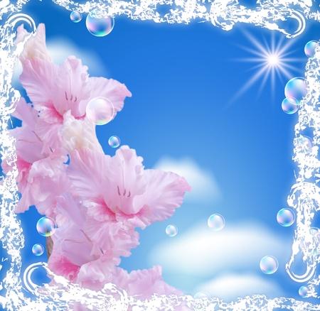 Gladiole und Wolken in einem weißen Rahmen öffnen-Arbeit Standard-Bild