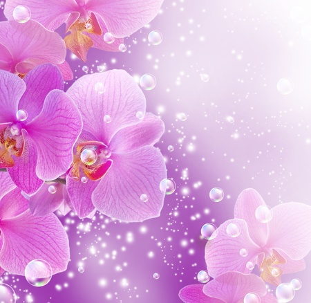 Card with orchid and bubbles photo