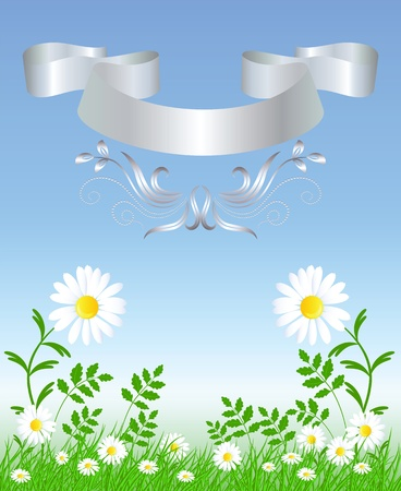 ���silver ribbon���: Camomiles with green grass and silver ribbon