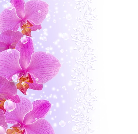 phal: Card with orchid, bubbles and ornament