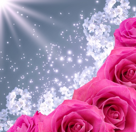 pink bubbles: Card with roses  and stars