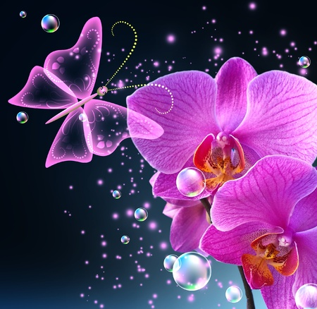 Orchid, butterfly, bubbles and stars photo