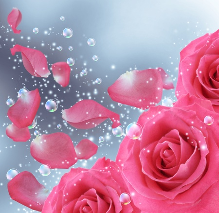 Card with roses, bubbles and  flying petals  photo