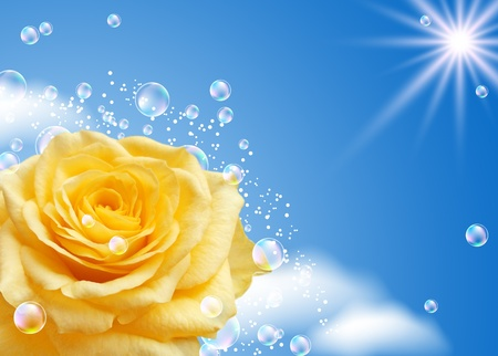 blue rose: Yellow rose and bubbles against the sky