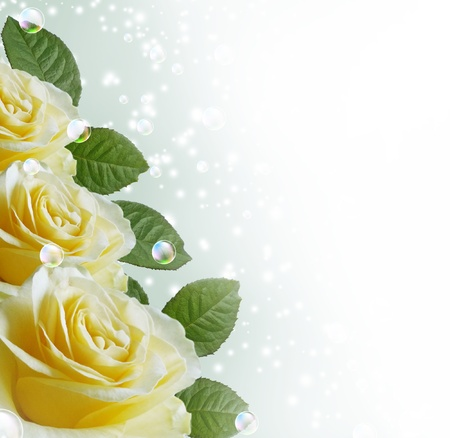 yellow roses: Tarjeta de rosas, burbujas y estrellas Foto de archivo
