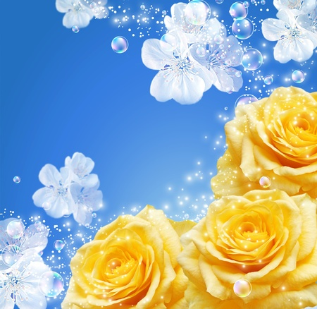 Roses, white flowers and bubbles   photo