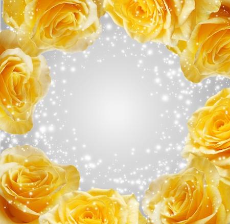rosas amarillas: Espumoso rosas amarillas