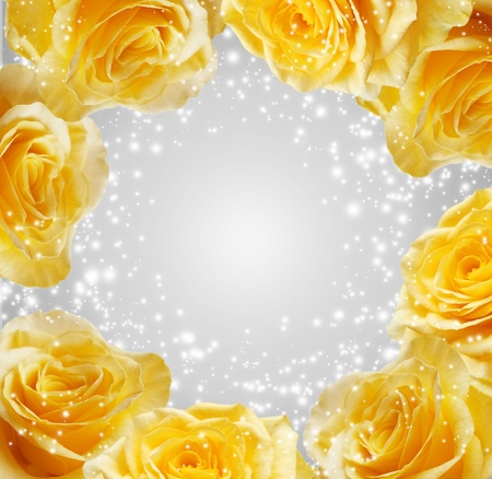 rose frame: Sparkling yellow roses