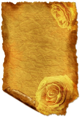 vintage parchement: Old paper with roses