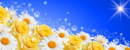 Daisies and roses Stock Photo - 11623106