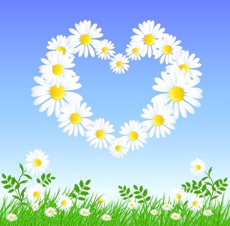 Daisy heart  in the sky Vector