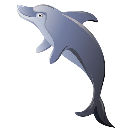dolphins: Dolphin isolated Illustration