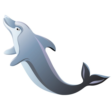 dolphin fish: Dolphin isolated Illustration