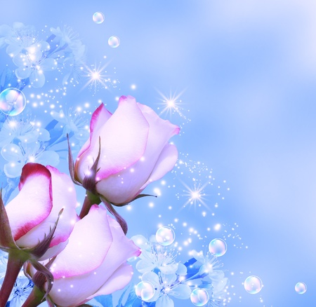 blue roses: Roses and shine stars