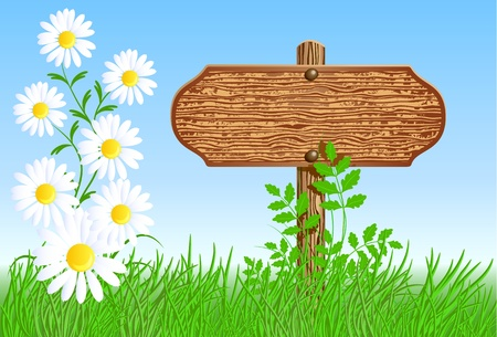 grass border: Wooden signboard on the meadow with daisies