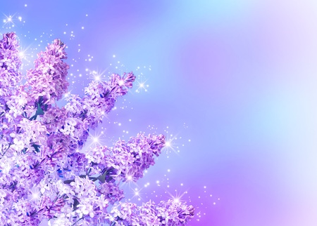 Lilac blossom and shine stars Stock Photo - 12168639