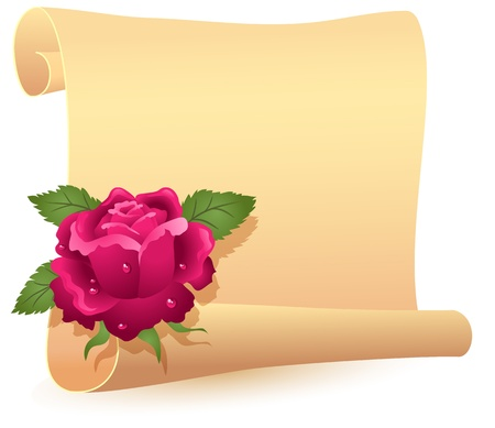 Folded parchment for your text and rose