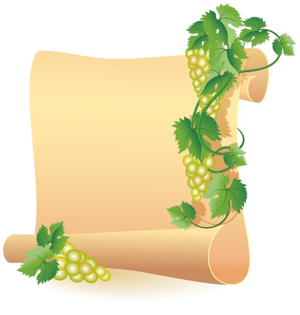 Folded parchment for your text and vine Illustration