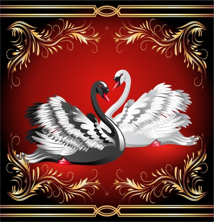 Elegant white and black swan on red background with golden ornament Illustration