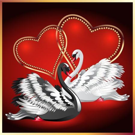 faithfulness: Elegant white and black swan on red background with two hearts