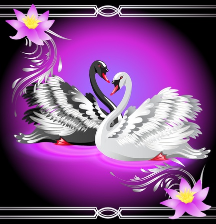 Elegant white and black swan on violet background with lilies
