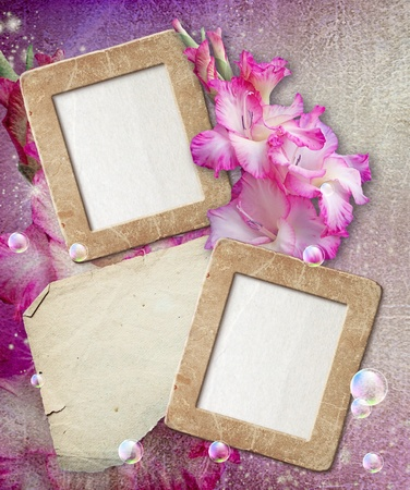 Old grunge photo frame with gladiolus and paper for letter   Stock Photo - 12469470