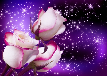 Three roses on background of fantastic starry sky photo