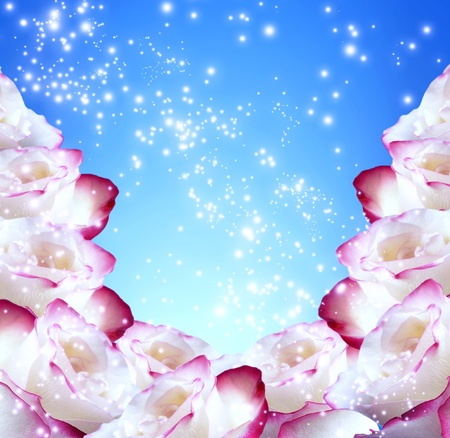 Roses and shine stars   Stock Photo - 12809299