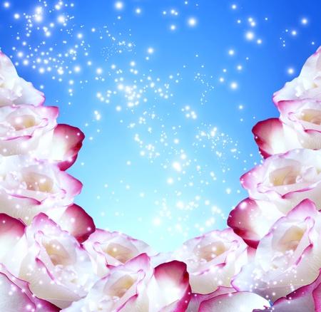Roses and shine stars Stock Photo - 12809299