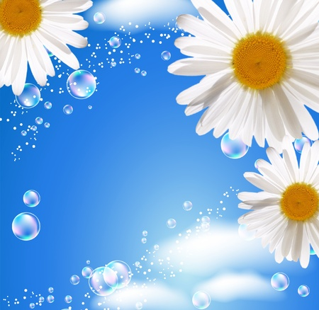Daisies and bubbles against the sky photo