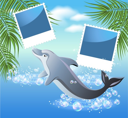 Palm, dolphin and photo frame Stock Vector - 13035687