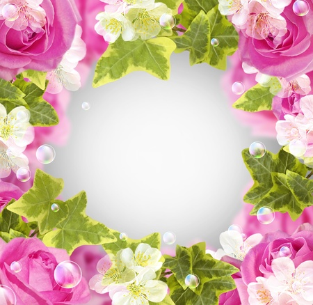 Card with roses, white flowers and bubbles Stock Photo - 13167443