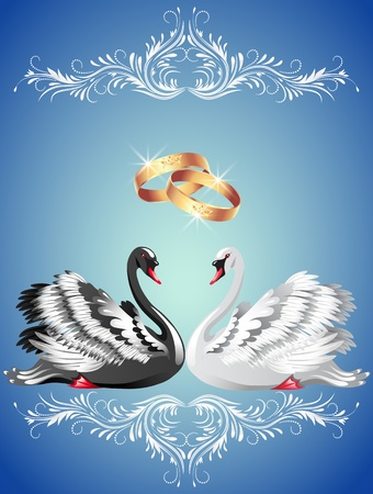 Card with wedding rings and two swans in ornament frame Vector