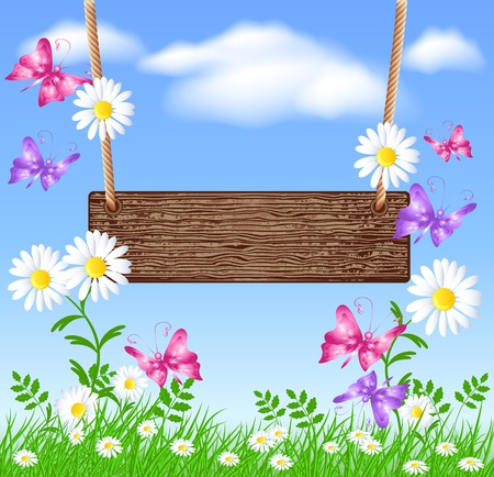 Wooden signboard on the meadow with daisies
