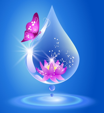 Water drop and lily  Symbol of clean water