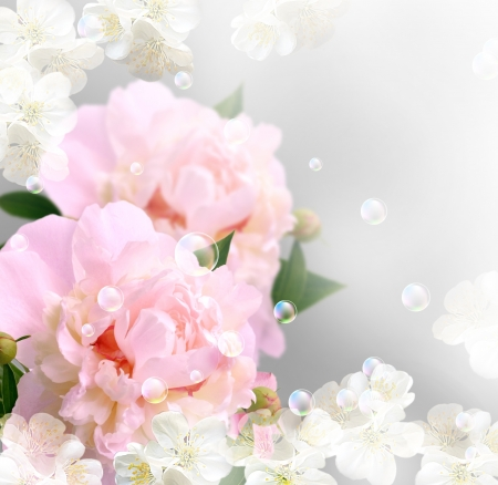 Card with peony, white flowers and bubbles   photo
