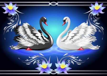 Elegant white and black swan on blue background with lilies Illustration